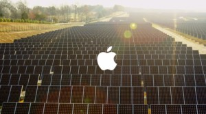 cover_Apple_Better_Commercial
