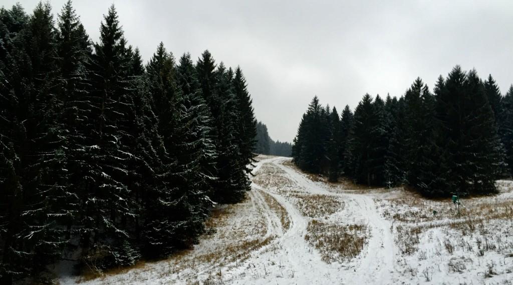 Višňovská dolina - svetapple.sk