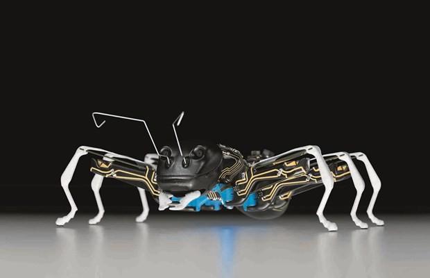 robotický mravec - svetapple.sk