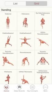 3D Yoga anatomy - svetapple.sk