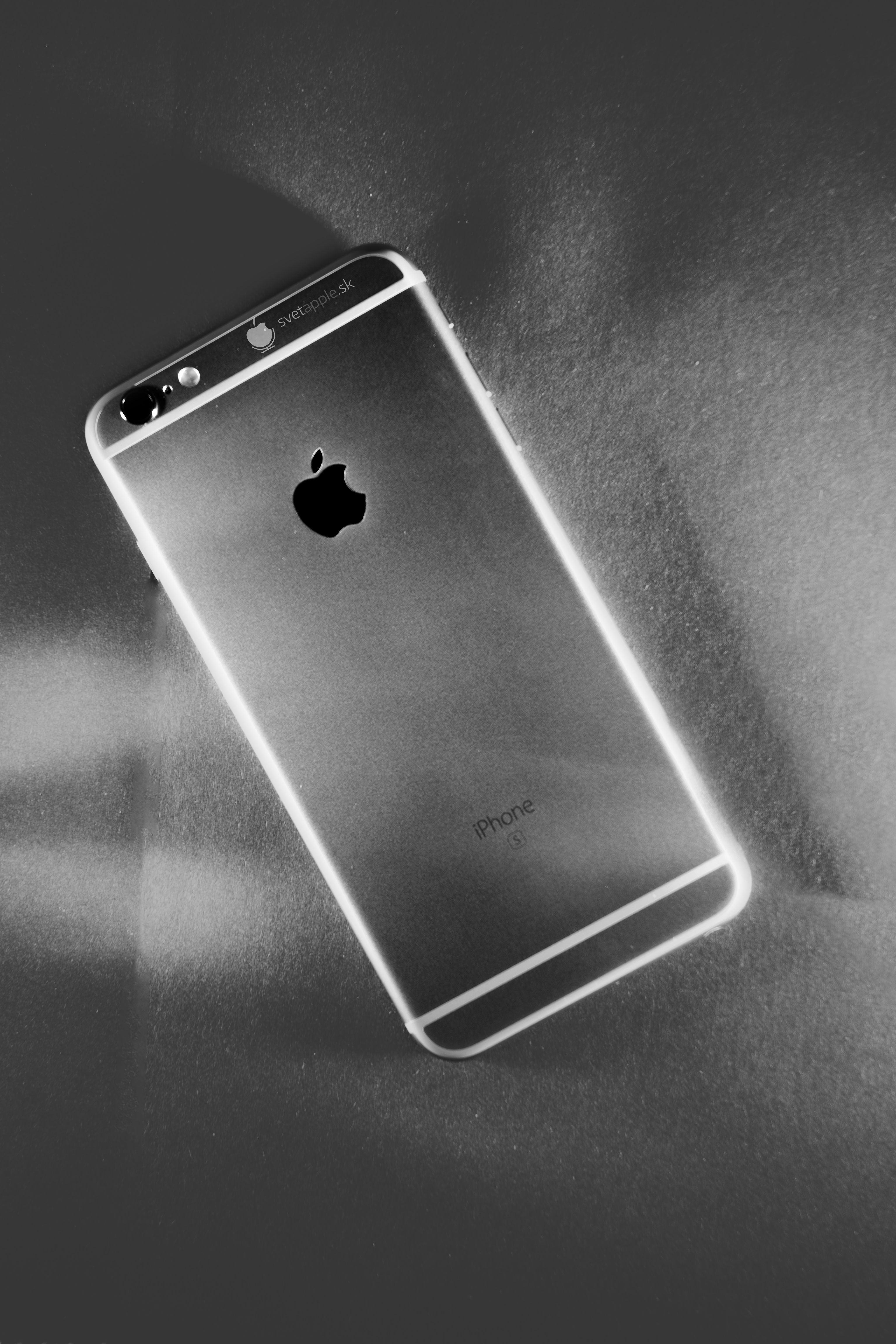DSC_0429 - iPhone 6S (08.2015)