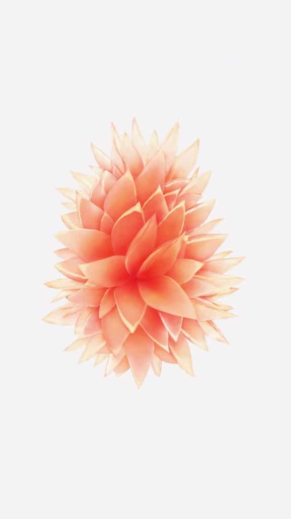 Quentin_IOS_iPhone-SE-apple-wallpaper-mod