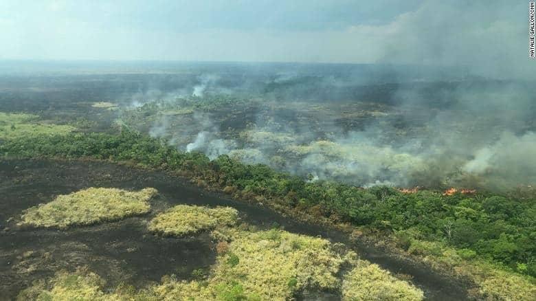 Amazonský prales horí, Apple ho pomôže zachrániť a obnoviť. - svetapple.sk