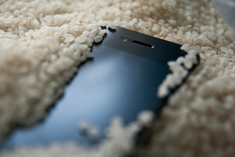 iPhone ryža