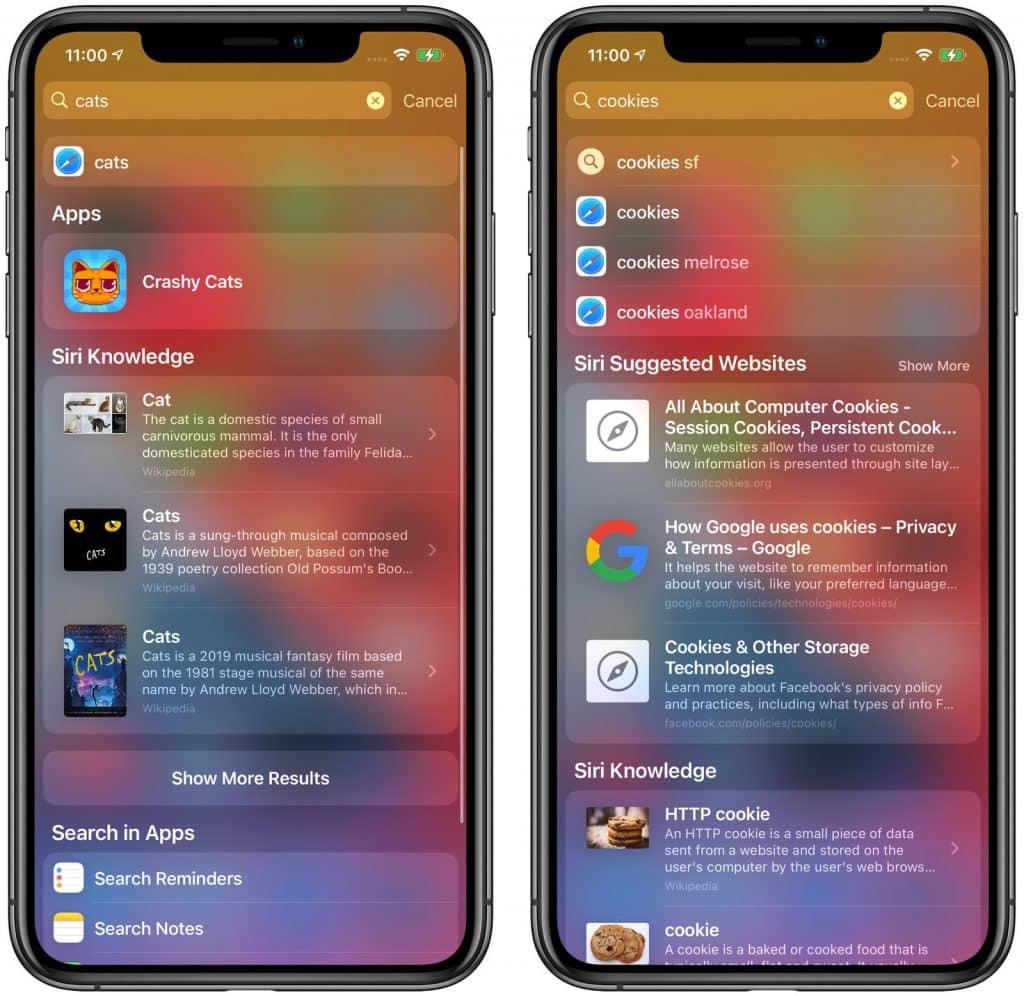 iOS 14 vyhľadávanie