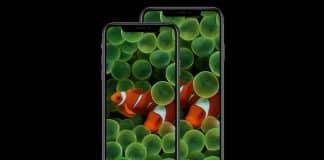 "Pozadie ""clownfish"" pre moderné iPhony"