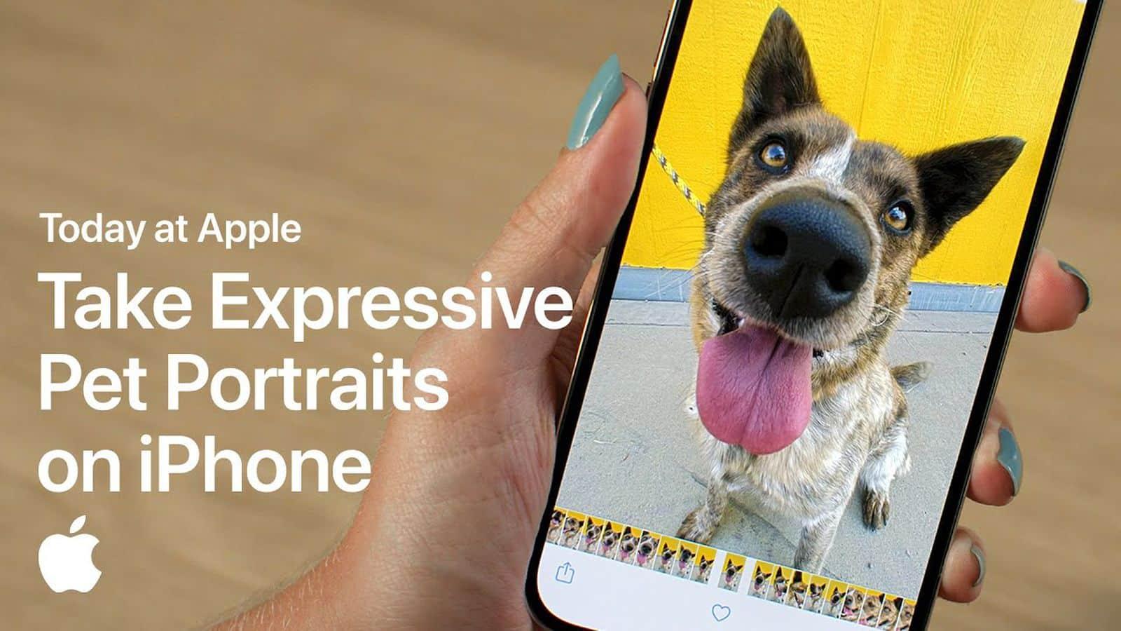 Apple portrait